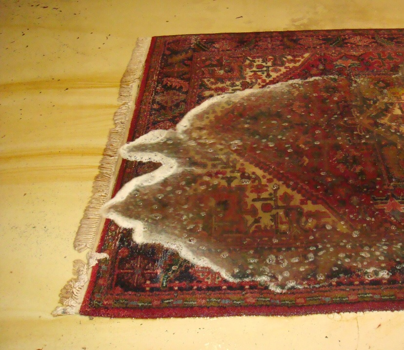 Wet And Hail Damage Rugs Behnam Rugs