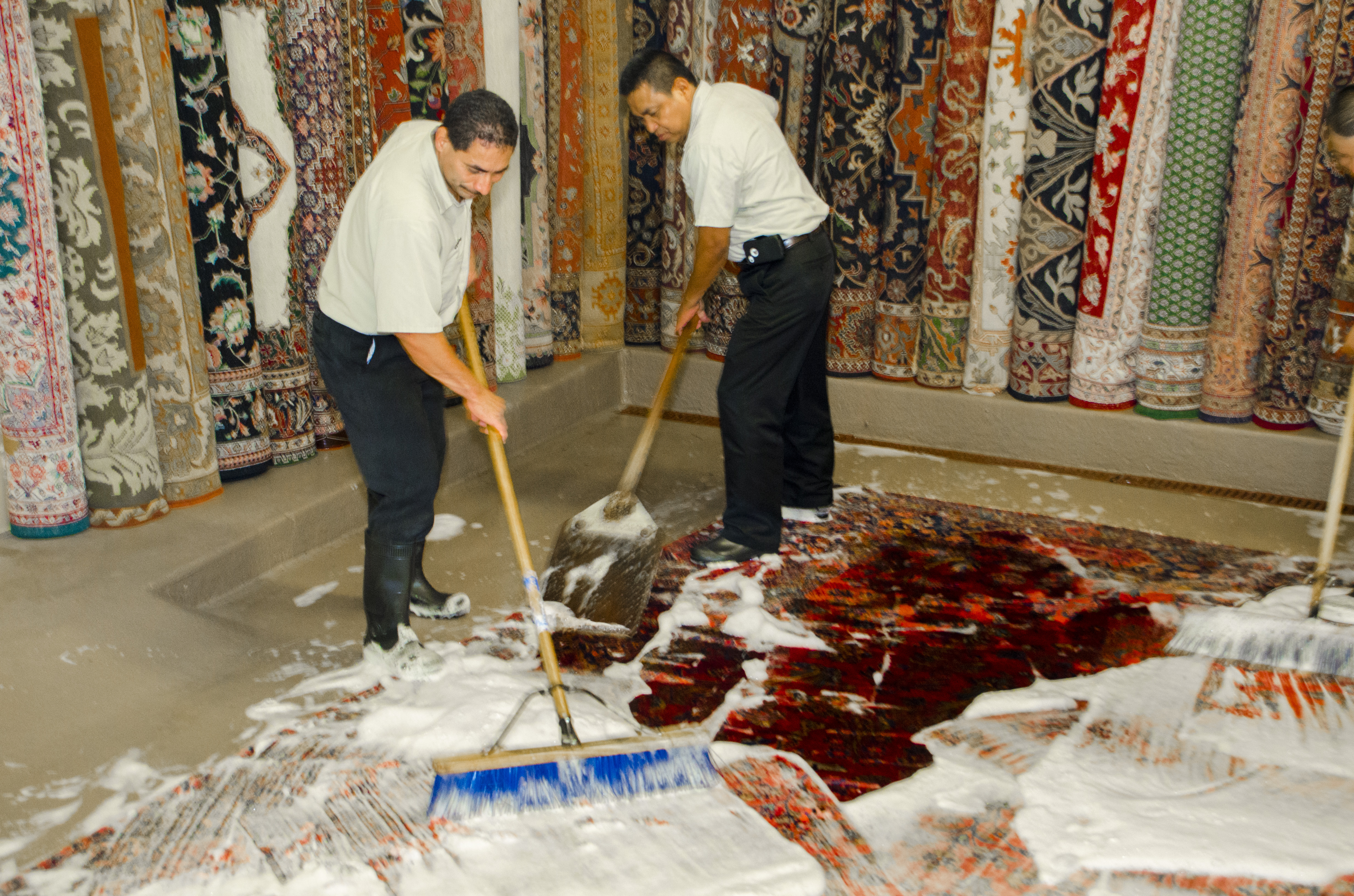 Behnam Rugs Professional Rug Cleaning