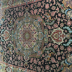 explore our rugs
